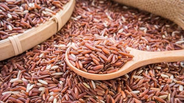 manfaat beras merah bagi ayam