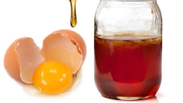 Manfaat Madu dan Telur Bagi Ayam